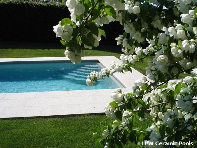 Hoe kiest u uw droomzwembad aanleg van een zwembad for Kostprijs polyester zwembad
