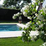 De lente is ideaal voor de opstart van uw zwembad